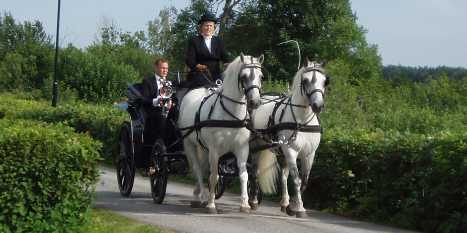 Vackert bröllopsekipage